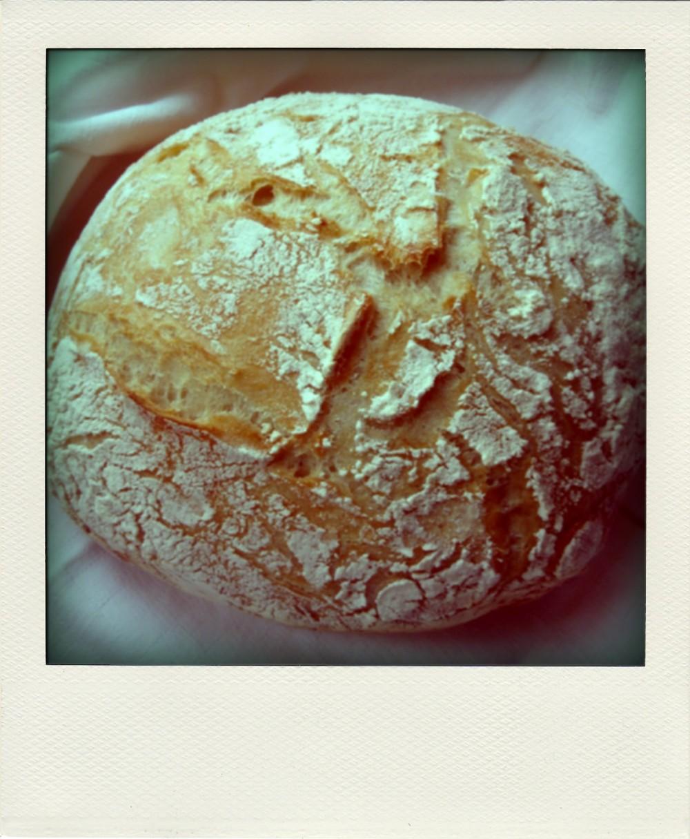 Mój Pierwszy Chleb